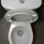 unusual facts about toilets